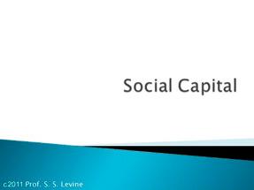 Social Capital 2010